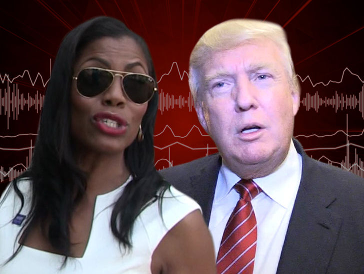 Omarosa's New Tape Reveals Trump Accusing Hillary of Russia Collusion