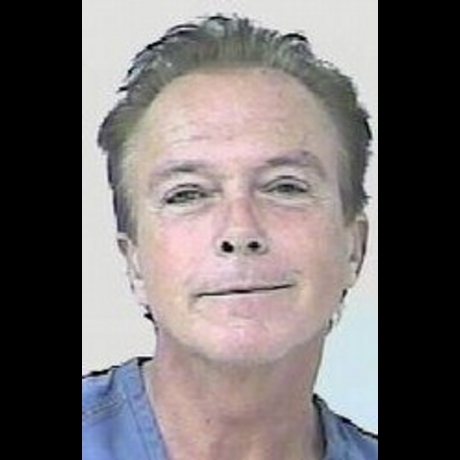 David Cassidy arrested on suspicion of DUI in 2010.