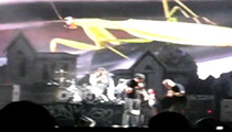 Blink 182 Singer Tom DeLonge SAVES Stage Crasher's Life