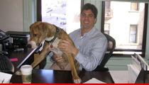 Nick Santino's Suicide -- Condo Board Member Accepts No Responsibility