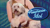 'Britain's Got Talent' Dog -- Too Famous For 'American Idol'