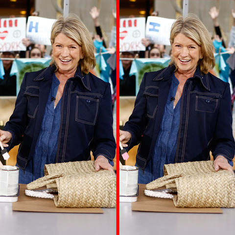 Can you spot the THREE differences in the Martha Stewart picture?
