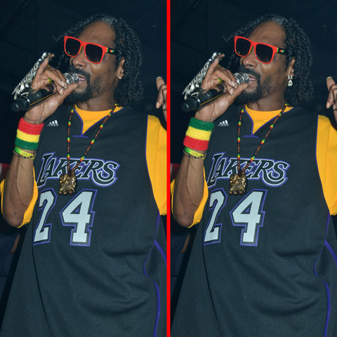 Can you spot the THREE differences in the Snoop Lion picture?