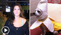 'Don't Trust the B in Apt. 23' Actress -- My Dog's BUZZING Hard for Halloween