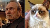 Tommy Lee Jones -- 'Grumpy' Face Goes Viral