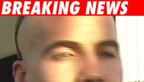 Zane Blamed for Bad 'Bloodrayne' Deal