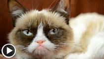 Grumpy Cat -- Meow Do You Like Them Apples?
