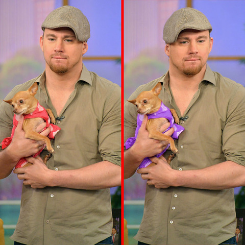 Can you spot the THREE differences in the Channing Tatum picture?