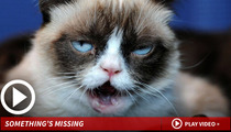 Grumpy Cat -- Not the Sharpest Claw on the Paw