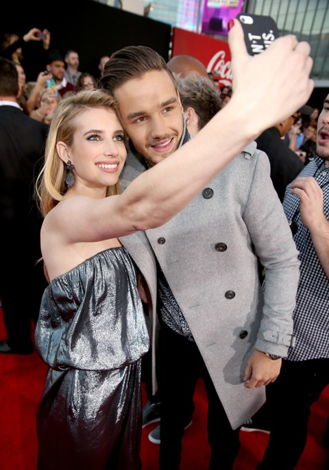 Emma Roberts fangirled during this selfie with 1 Direction band member Liam Payne!