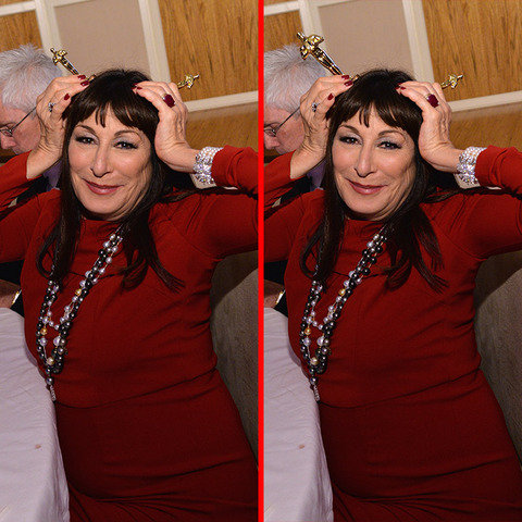 Can you spot the THREE differences in the Anjelica Huston picture?