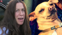 Alanis Morissette Hated Dog for Being Piss Poor -- House Manager Claims