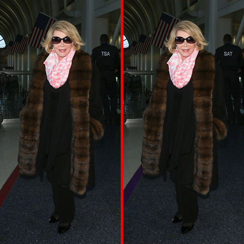 Can you spot the THREE differences in the Joan Rivers picture?