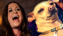 Alanis Morissette -- I'm Afraid My Dog Will Be Kidnapped and Held for Ransom