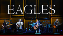 The Eagles Fan Sues -- Cops Smashed My Face at Concert