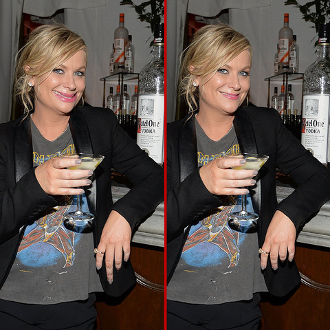 Can you spot the THREE differences in the Amy Poehler photos?