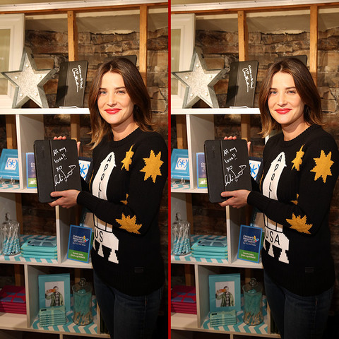 Can you spot the THREE differences in the Cobie Smulders photos?
