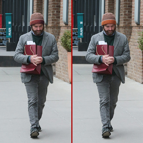 Can you spot the THREE differences in the Zach Galifianakis photos?