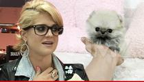 Kelly Osbourne -- I'm Spending Thousands On These Bitches