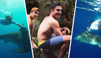 Zac Efron -- Shark Rodeo! This Doesn't End Well ... Usually  (TMZ TV)
