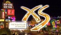 David Guetta -- Gang Stabbings at Big Vegas Show