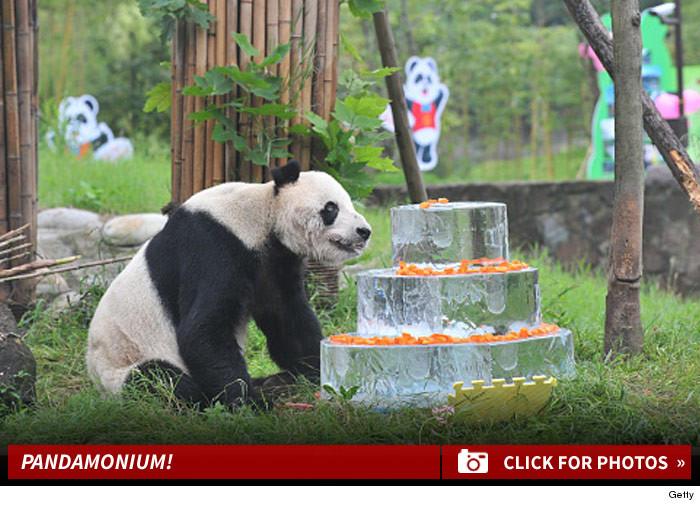 Giant Panda Celebrates 30th Birthday With Cake Pan
