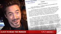 Robert Downey Jr. -- Governor Grants Pardon for Drug Conviction