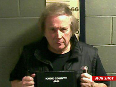 Don McLean -- 'American Pie' Songwriter Arrested for Domestic Violence (MUG SHOT)