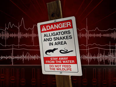 Disney Alligator Attack -- 911 Call (AUDIO)
