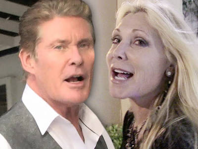 David Hasselhoff -- I Slashed My Spousal Support! The Judge & I Are Thrilled