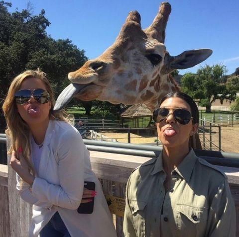 Khloe and Kourtney Kardashian!