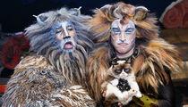 Grumpy Cat -- Alive-ish and Kickin' On Broadway (PHOTO)