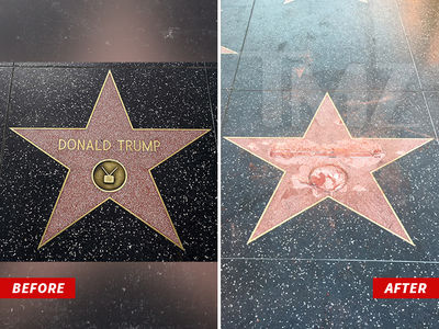 Donald Trump -- Hollywood Walk Star Obliterated On Camera by Vandal (VIDEO + PHOTOS)