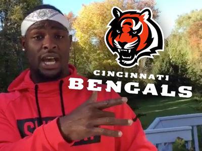Steelers' Le'Veon Bell -- DISSES CINCINNATI ... In New Rap Song (AUDIO)
