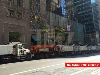 Donald Trump -- Tower in the Dumpster ... To Prevent Attacks (PHOTOS)