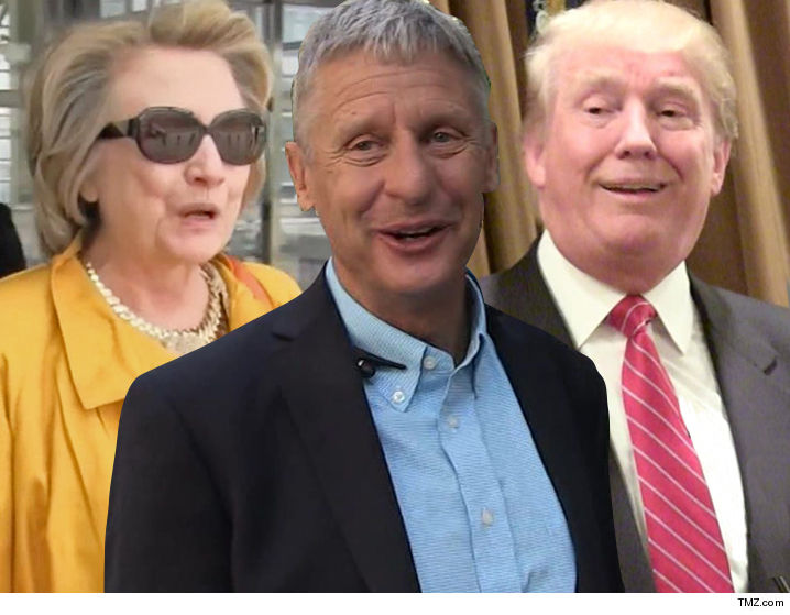 d61b8f6c7 Gov. Gary Johnson Fires Back at Pissed Hillary Fans
