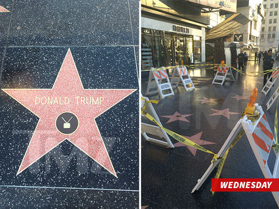 Donald Trump -- Hollywood Star Gets Presidential Protection (PHOTOS)