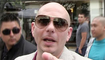 Pitbull Releases Florida Tourism Contract, State Paid Him $1 Million