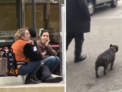 Carrie Fisher's Daughter & Dog Arrive At Hospital (VIDEO)