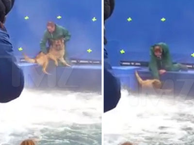 'A Dog's Purpose' Video Triggers Suspension