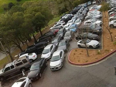 Elon Musk's Tesla Employee Parking Is a Nightmare and Hilarious (PHOTO GALLERY)