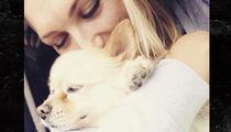 Brooke Hogan Finds Lost Dog Safe and Sound!