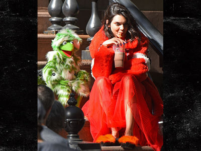Kendall Jenner's Photo Shoot with Kermit the Frog for Love Magazine (PHOTO)