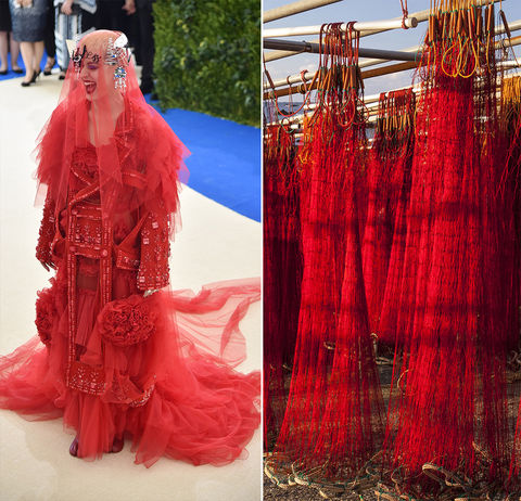 Katy Perry and tangled up fishing nets