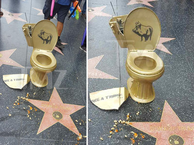 Donald Trump's Hollywood Star Vandalized with Golden Toilet (PHOTOS)