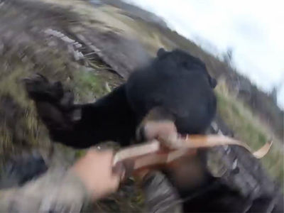Viral Bear Attack Hunter Killed The Bear That Attacked Him (VIDEO)