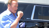 Arnold Schwarzenegger Is Going to Mayweather vs. McGregor Fight