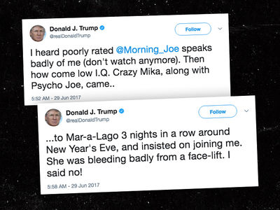 Donald Trump Claims MSNBC Anchor Mika Brzezinski 'Bleeding Badly from Face-Lift' (UPDATE)