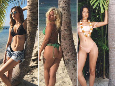 Tree-Huggin' Hotties -- See the Stars With Wood