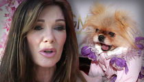 Lisa Vanderpump Sued Over Dog Outfits for Giggy